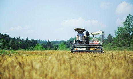 蓬安农业机械化率达60% 粮油作物机械化播栽面积达到38万亩